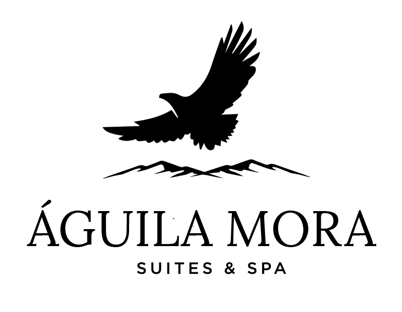 Aguila Mora Suites