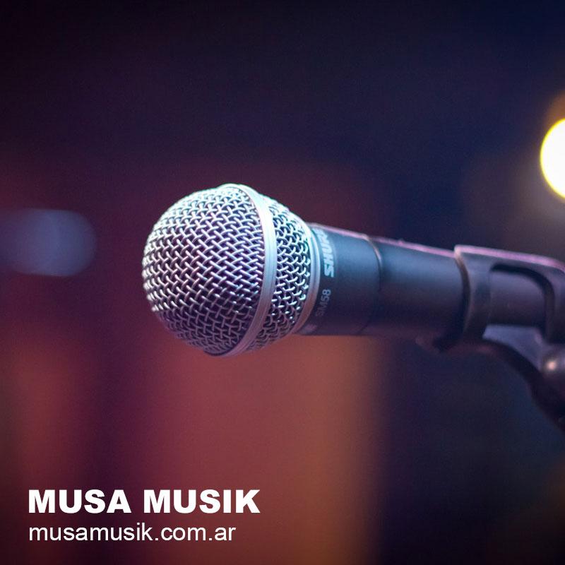 musa musik