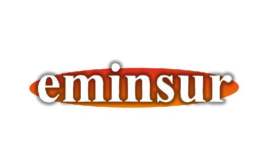 EMINSUR S.R.L. - Logo