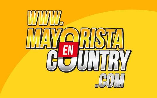 MAYORISTA EN COUNTRY - Logo