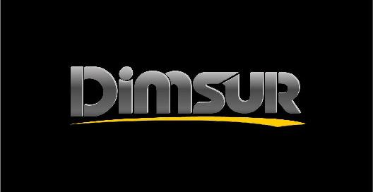 DIMSUR EQ S.R.L. - Logo