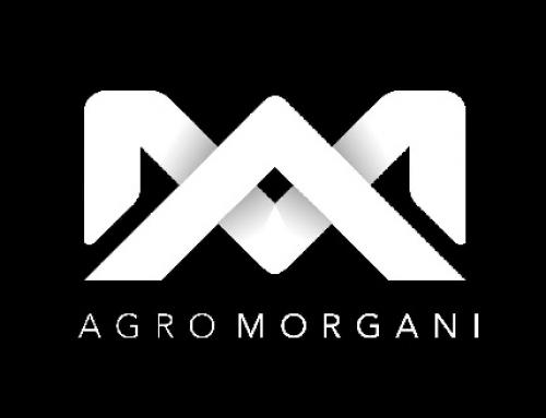 ¡Bienvenido Agro Morgani!