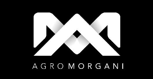 AGRO MORGANI - Logo