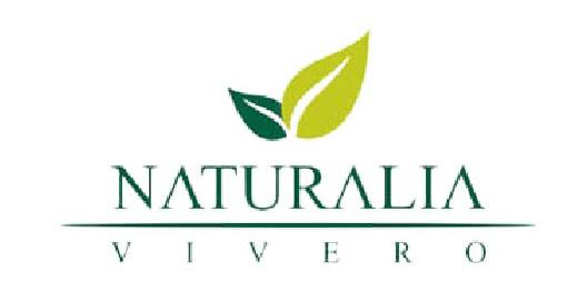 Vivero Naturalia - Logo